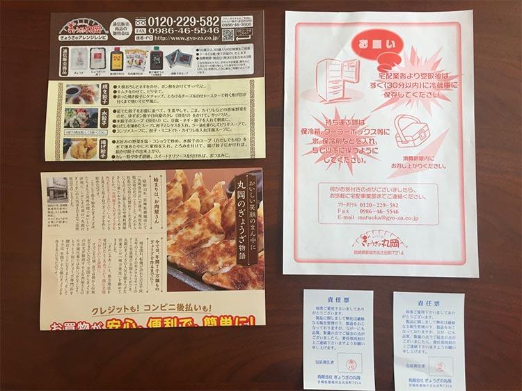 宮崎県のうまいもの「丸岡のぎょうざ」を実食!|餃子以外の内容物一式